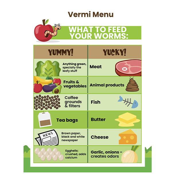 Vermi menu